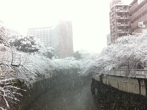 Kanda river covered in snow