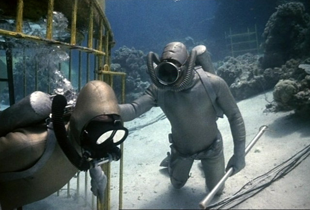 Oceanauts in an anti´shark cage