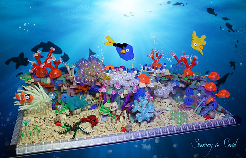 finding nemo coral reef - photo #25