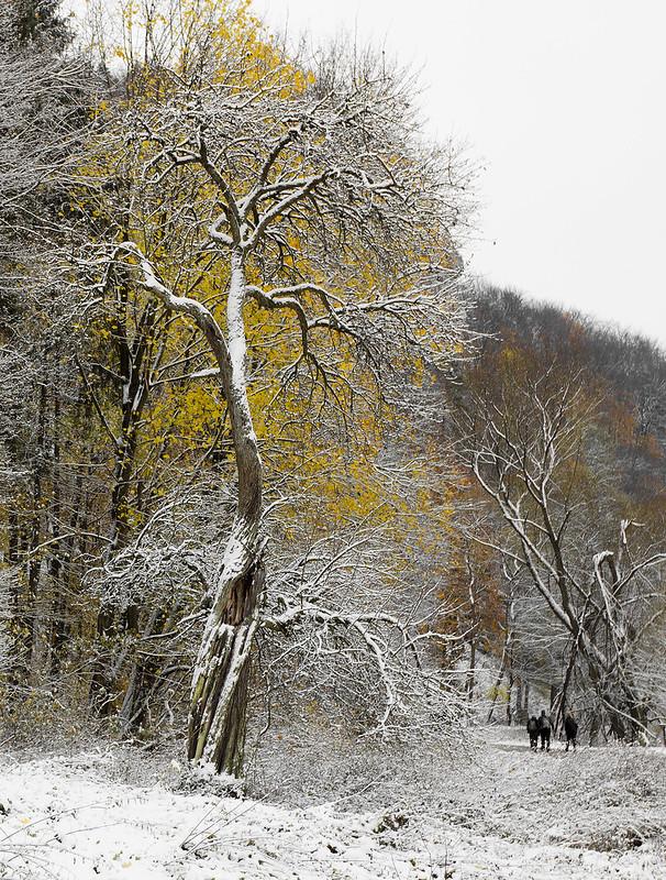 Jesień - Ojcowski Park Narodowy