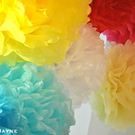 Paper flowers by Life's a Party