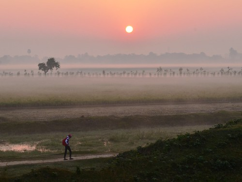 mist beautiful misty fog sunrise trekking trek landscape highresolution nikon foggy kitlens trekkers dreamy lonely nophotoshop bengal westbengal bihar d5100 nikon1855mmf3556afsvrdx grambanglarchobi kishangunj