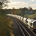 66599 by Erewash Rail