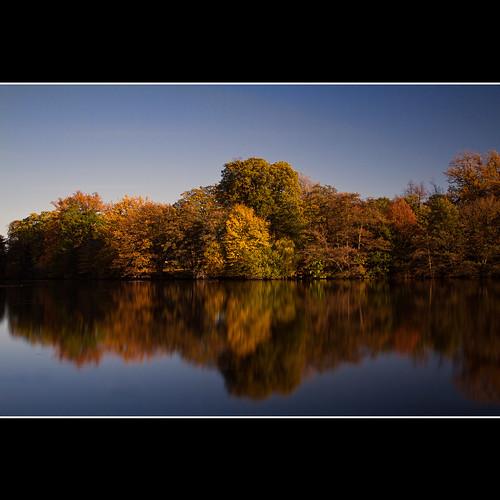 autumn lake reflection water canon 7d berkshire readinguniversity photomix bestcapturesaoi mygearandme mygearandmepremium sisyphus007 kiedyszko michaelkiedyszko