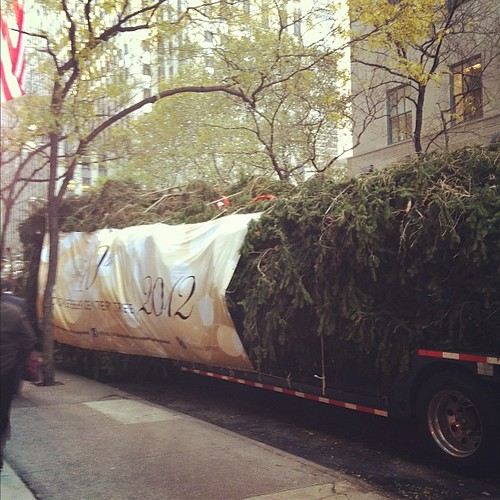 The #Christmas tree at Rockefeller Center has arrived! #newyork #holidays #nyc #midtown #30Rock