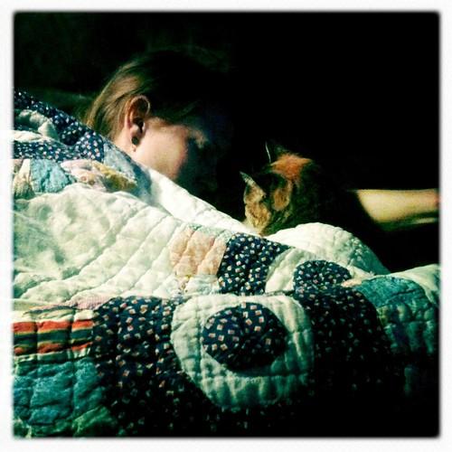 Cuddling kitty