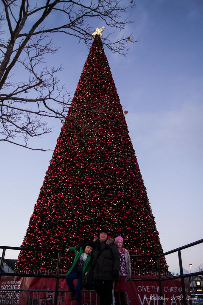 Really Cool Christmas Lights