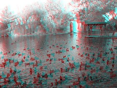 ABQ zoo in 3d