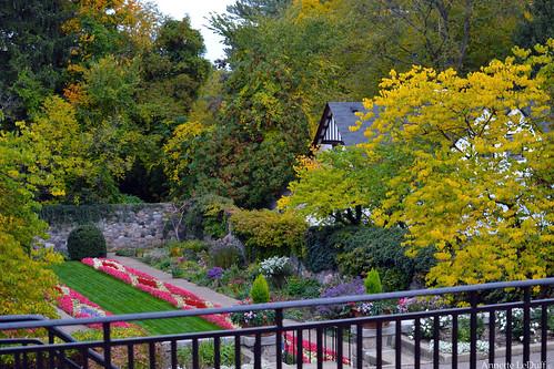 View of Sunken Garden