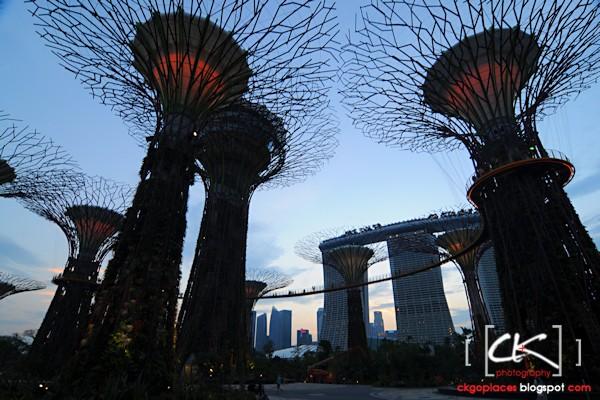 Singapore_0137