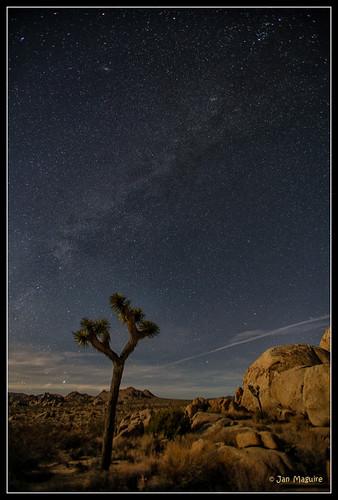 california stars unitedstates milkyway joshuatreenationalpark canoneos5dmarkiii