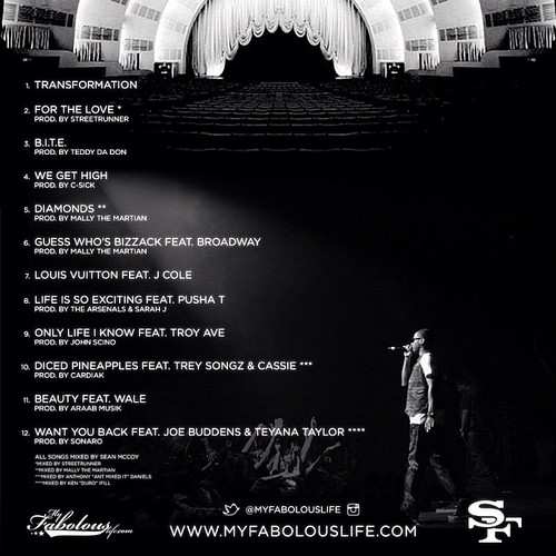 fabolous-soul-tape-back