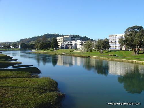 FotoFriday 3: Taruheru River Gisborne