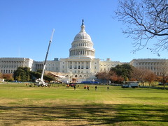 Christmas Tree nearly in place on Capitol Grounds