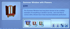 Summer Window with Flowers