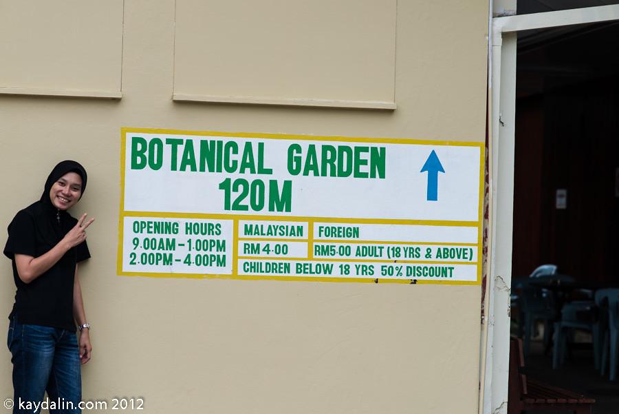 кинабалу ботанический сад
