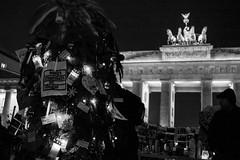 #refugeecamp berlin, brandenburg gate   antirassistisches interkulturelles baumfest antiracist - intercultural tree-party