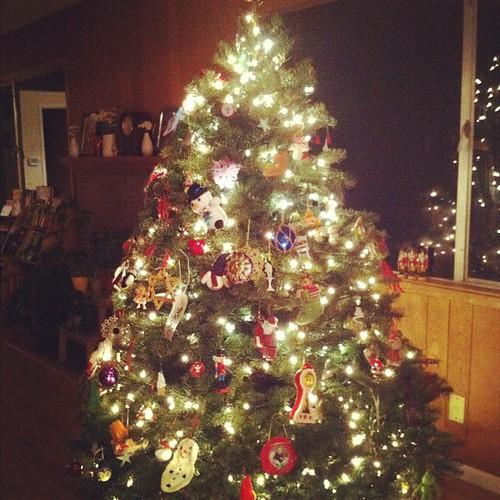 Tree's up!