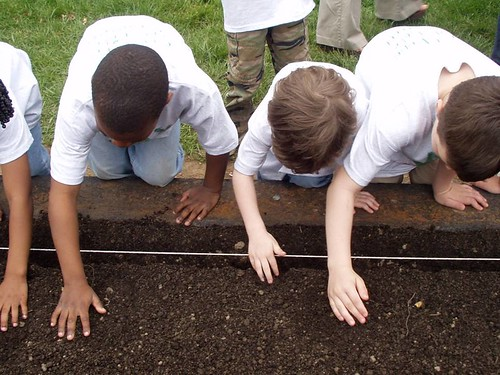 Students at Lawrenceville Elementary School in Lawrenceville, NJ cultivate their school garden from planting to harvest!