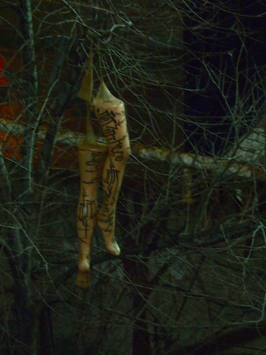 legs hung in the trees