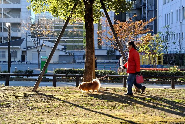 yokohama2012_13_kpax