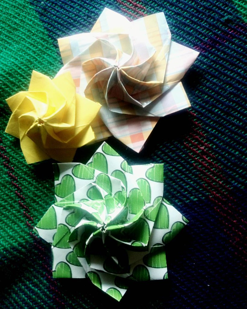 As Dobradeirass Favorite Flickr Photos Picssr Rose Flower Diagram Origami Lina Spiral
