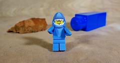 Shark Suit Guy