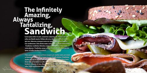 P52-40 Sandwich