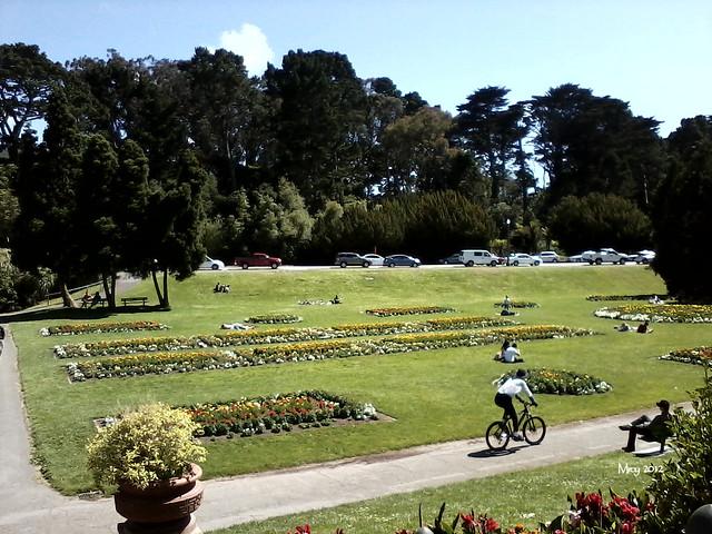 2012_06_24 picnic 080