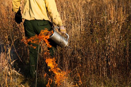 Burning biocore prairie - 20121108 - 50