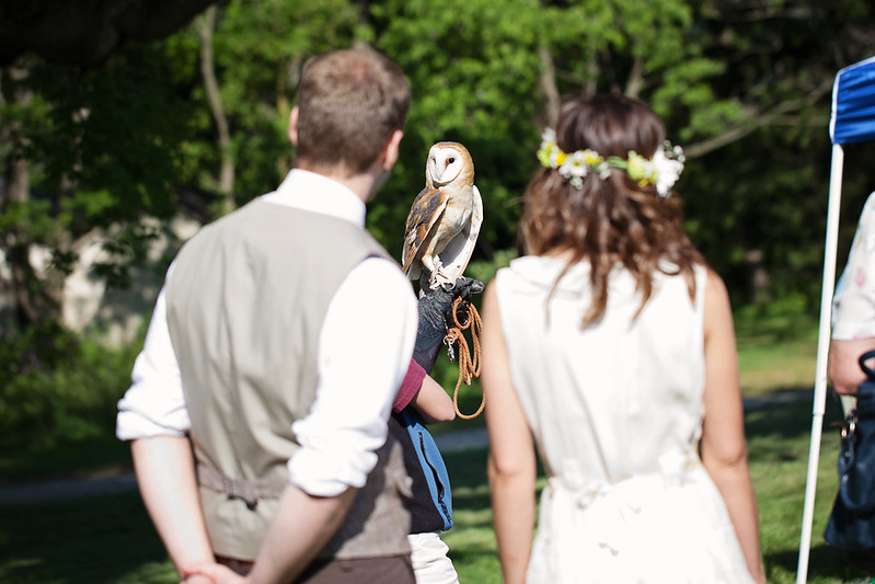 Wedding Owl