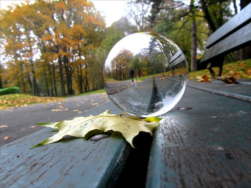 Mouvaux public park refracted on crystal ball