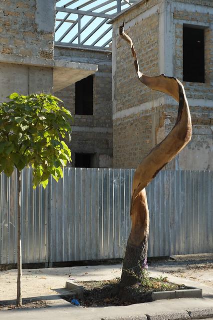 Деревянные скульптуры в Симферополе - лента
