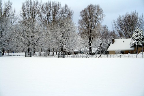 Winter picture 05
