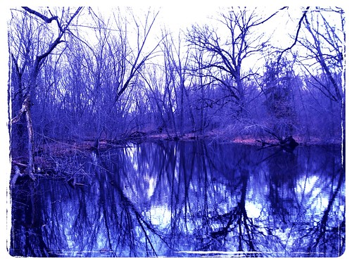 Stark Reflections II