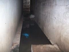 mold, wall, air-raid shelter,