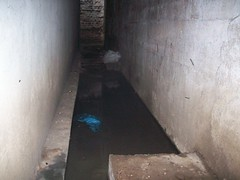 bunker(0.0), floor(0.0), room(0.0), plaster(0.0), flooring(0.0), infrastructure(0.0), mold(1.0), wall(1.0), air-raid shelter(1.0),