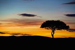 Sun rising & Sunsetting colours