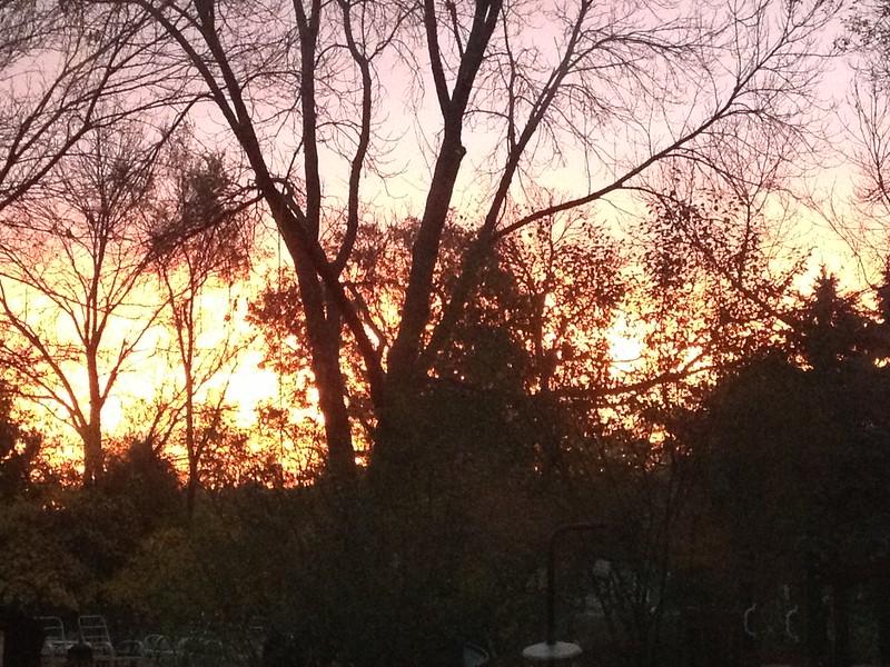 290 sunrise