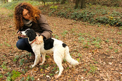setter(0.0), animal(1.0), dog(1.0), pet(1.0), lagotto romagnolo(1.0), mammal(1.0), small mã¼nsterlã¤nder(1.0), brittany(1.0), dog walking(1.0), spaniel(1.0), hunting dog(1.0), french spaniel(1.0), english springer spaniel(1.0),