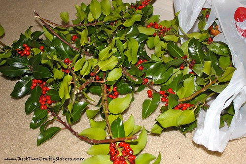 Using Holly in Decorating