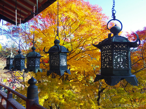 錦秋の談山神社 (Tanzan shrine in autumn)