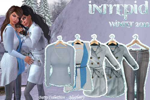 NEW!!! Intrepid:: Winter 2012 Blueberry