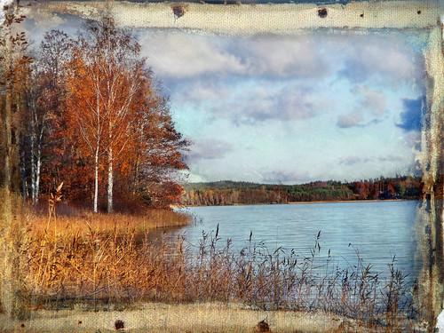 autumn sky lake tree texture reed landscape sweden photomix bessula tatot magicunicornverybest magicunicornmasterpiece rememberthatmomentlevel1 bestevergoldenartists creativephotocafe