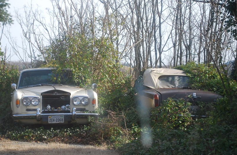 Abandoned Rolls-Royce Silver Shadow