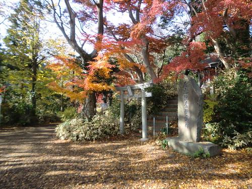 20121203高尾山027
