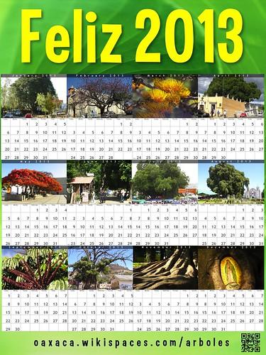 Green Feliz 2013: Arboles de Oaxaca (Oaxaca Trees) @OaxacaFertil