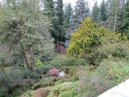 Cragside gardens 1