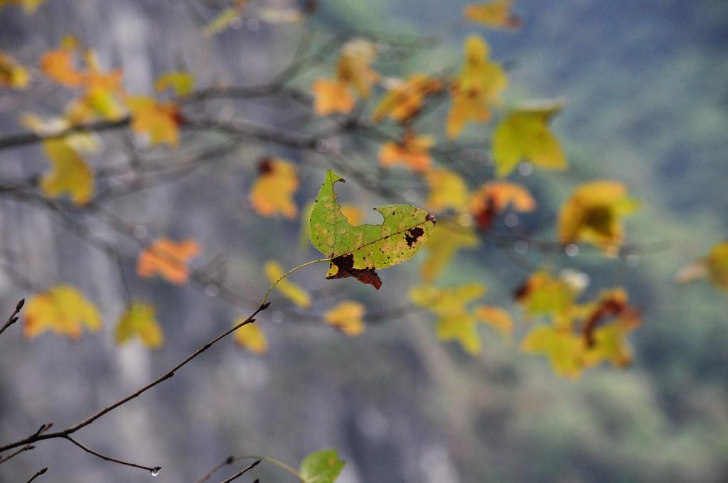 Taroko National Park 太鲁阁国家公园