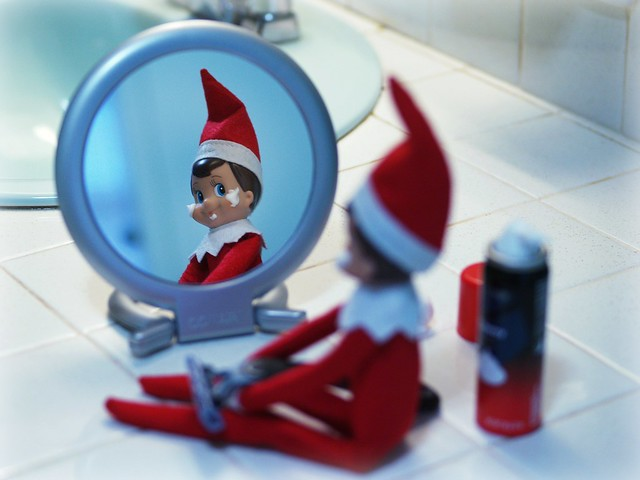 Day 9 : Elf on the Shelf